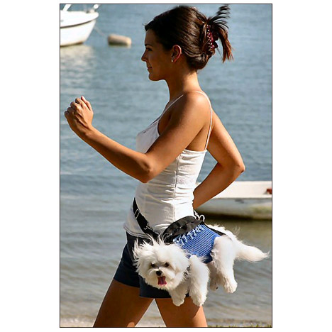 Dog Carrier Like Baby Bjorn